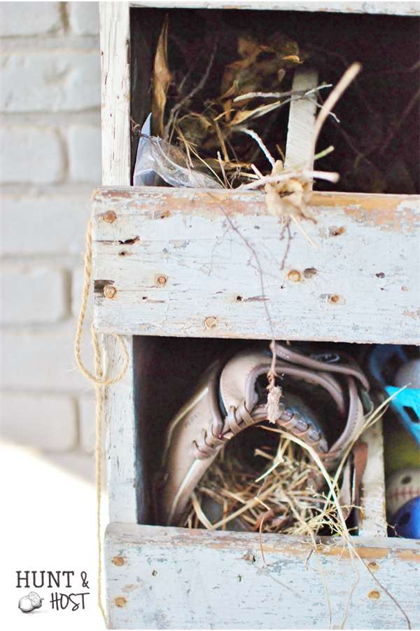 bird nest in glove