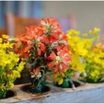 how to arrange free flowers