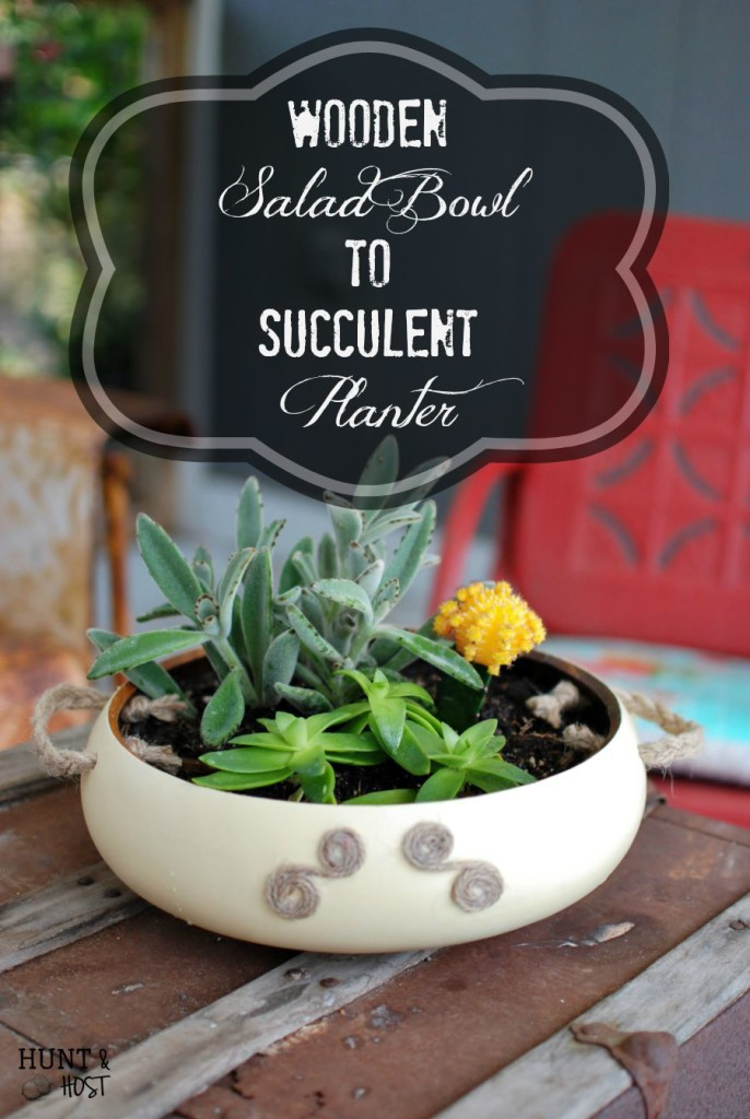 wooden salad bowl succulent planter