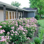 front yard curb appeal home tour
