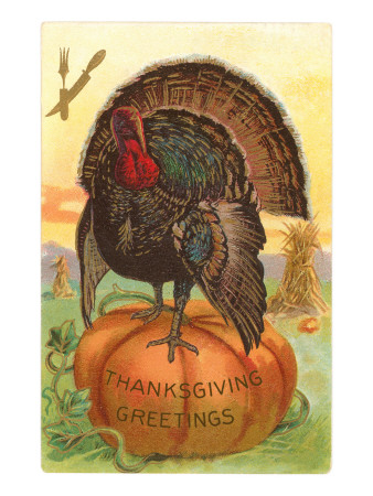 greetings-turkey-on-pumpkin