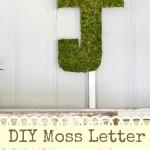 DIY moss letter tutorial