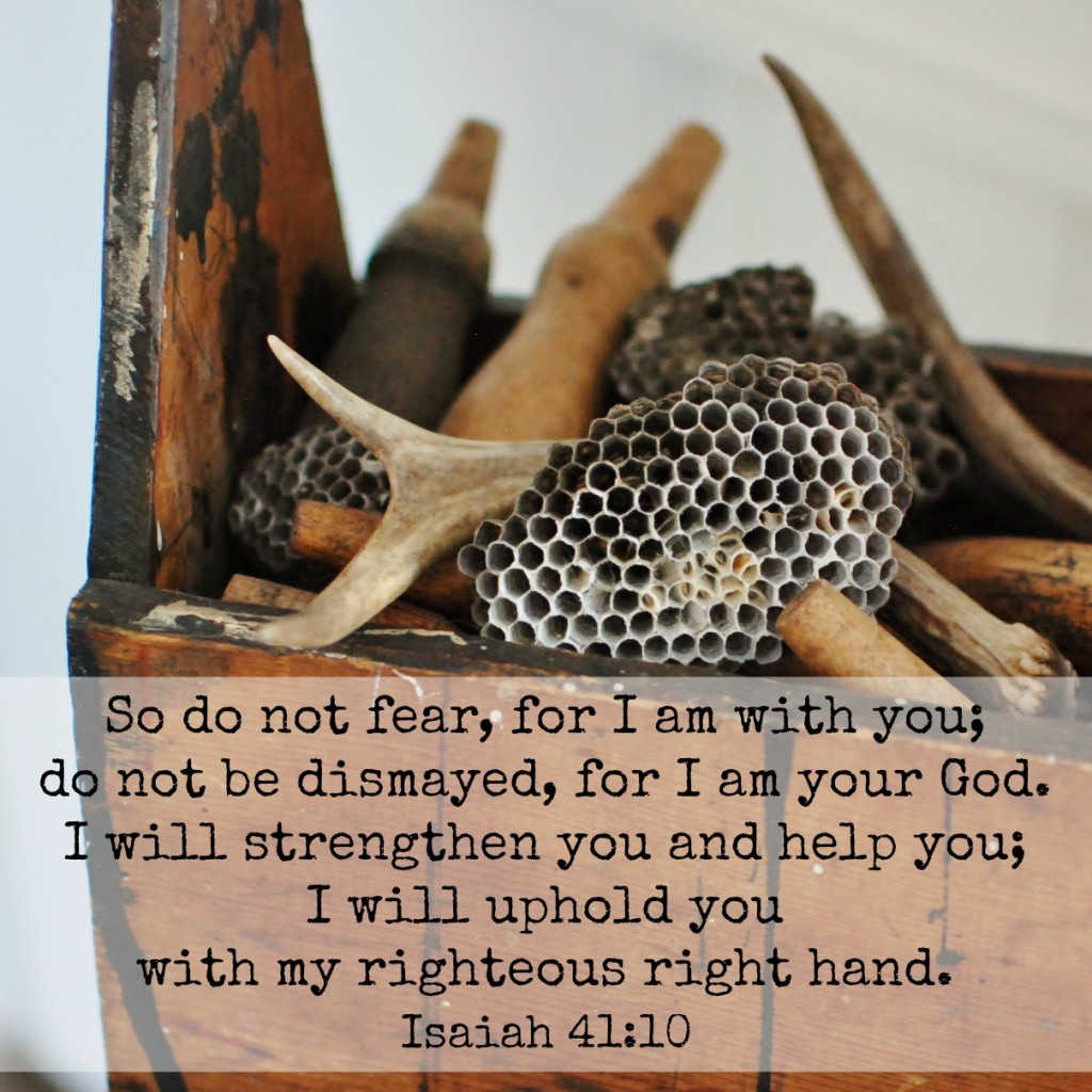 So do not fear, for I am with you; do not be dismayed, for I am your God. I will strengthen you and help you; I will uphold you with my righteous right hand. Isaiah 41:10 Memory verse challenge www.huntandhost.net