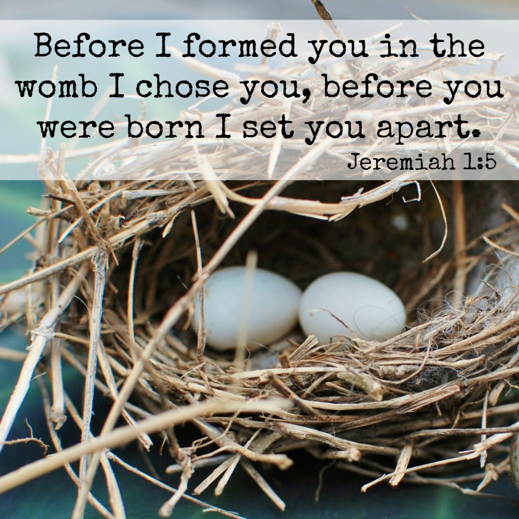 Before I formed you in the womb I chose you, before you were born I set you apart. Jeremiah 1:5 Memory verse challenge www.huntandhost.net