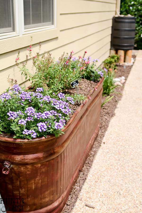 Master Gardener Home Garden Tour: Walk through this homeowner completed ladscape filled with salvaged planters, upcycled accents, creative flower bed borders, inventive erosion control, bee hives and curb side bird baths.