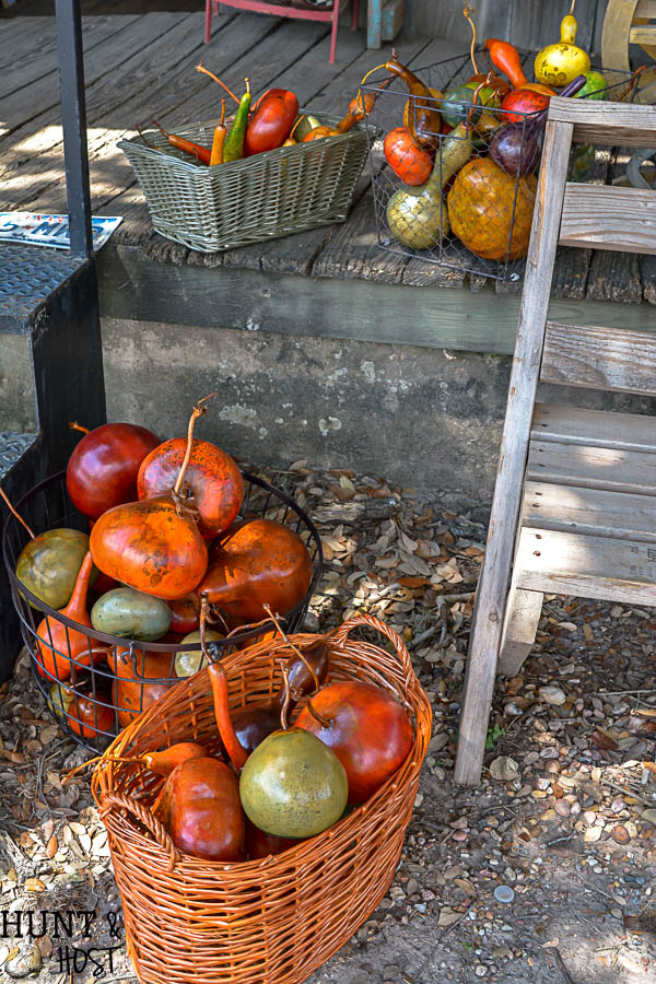Explore the sights and sounds of Round Top Antiques Week. A recap of the highlights and trends of the Fall 2017 Round Top/Warrenton Antiques Show.