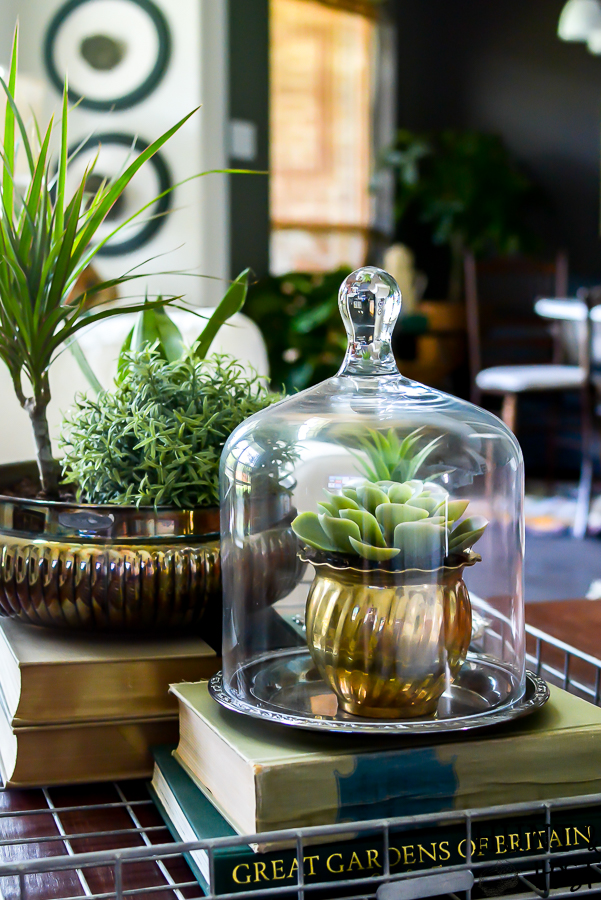 Adding vintage items to your coffee table décor is the perfect way to add age and interest to your living room. WIth these coffee table styling tips you will have your tabletop vignette rocking a vintage vibe in no time! #vintagestyle #frenchcountrycottage #frenchcountryliving #tarnishedsilver #succulentlove #clochedecor